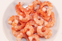 Shrimp. On a white plate Stock Photography