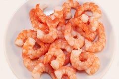 Shrimp Royalty Free Stock Image