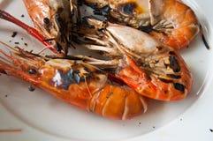 Shrimp on white plate Stock Image