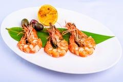 Shrimp Stock Image