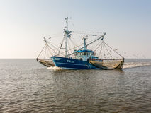 Shrimper fishing, Holland. Shrimp trawler fishing on Waddensea in the Netherlands Stock Photos