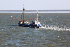 Shrimper  sails over dutch Waddensea, Ameland Island Royalty Free Stock Photo