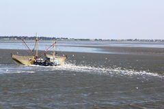 Shrimper  sails over dutch Waddensea near Ameland Royalty Free Stock Photo