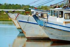 Shrimping Fleet. A row of shrimp boats docked in the waters of Galveston Bay Stock Photos
