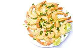 Shrimps royalty free stock image