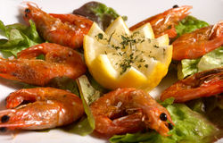 Shrimps. Fresh grilled shirmps served with coarse salt on salad Stock Image
