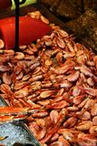 Fresh shrimps in a fish market Stock Photos