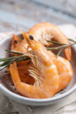 Shrimps. In a bowl with fresh rosemary Royalty Free Stock Photo