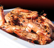 Shrimps. White plate full of grilled shrimps Stock Image