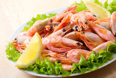 Shrimps Stock Photo