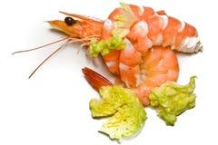 Shrimps. On a white background Royalty Free Stock Photo