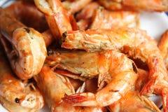 Shrimps Royalty Free Stock Photo