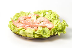 Shrimps. Closeup of  shrimps on plate served with green romano salad are ready to eat Stock Image