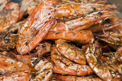 Shrimps. A closeup of roasted shrimps Royalty Free Stock Photo