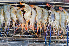 Shrimps. On grill close up Royalty Free Stock Photography