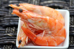 Shrimps. Some fresh shrimps on a plate Royalty Free Stock Photo