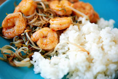 Shrimps amn rice Royalty Free Stock Photos