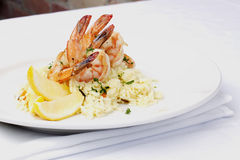 Shrimps on a bed of rice Royalty Free Stock Images