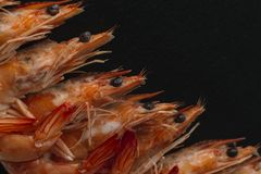 Shrimps on black background. Delicious seafood appetizer served boiled or grilled with spices. Close up. Top view Stock Photos