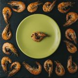 Shrimps on black background. Delicious seafood appetizer served boiled or grilled with spices. Close up. Top view Royalty Free Stock Image