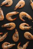 Shrimps on black background. Delicious seafood appetizer served boiled or grilled with spices. Close up. Top view Royalty Free Stock Photo