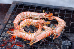 Shrimps on charcoal grill Stock Photo