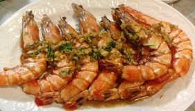 Shrimps. Close-up view of some fried big and delicious shrimps with garlic and green onion in a plate Stock Photo