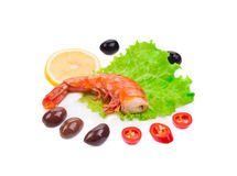 Shrimps close up Stock Photography