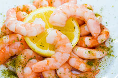 Shrimps cocktail Royalty Free Stock Photo