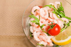 Shrimps cocktail appetizer Stock Image