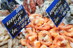 Shrimps on cooled market display Royalty Free Stock Photo