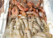 Shrimps and crabs  at the fish market. On the streets of Naples , Italy Royalty Free Stock Images