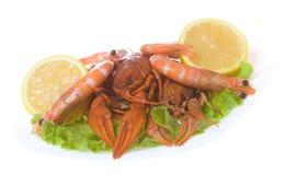 Shrimps and crayfish with green salad Stock Photos