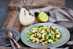 Shrimps, cucumber and lettuce salad with yogurt dressing. Shrimps, cucumber and lettuce fresh delicious salad with yogurt dressing stock photos