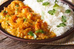 Shrimps in curry sauce with rice and cilantro horizontal Stock Images