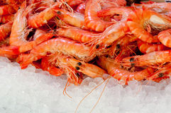 Shrimps at fishmarket Stock Photo