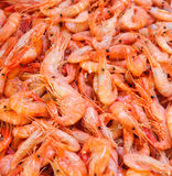 Shrimps at fishmarket Royalty Free Stock Image