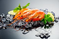 Shrimps. Fresh prawns on a black background. Seafood on crashed ice with herbs. Healthy food Royalty Free Stock Images
