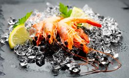 Shrimps. Fresh prawns on a black background. Seafood on crashed ice with herbs. Healthy food Stock Photo
