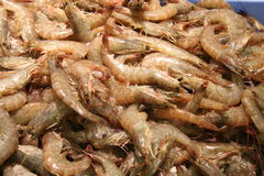 Shrimps. Fresh shrimps for sale in supermarket Royalty Free Stock Photos