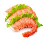Shrimps with green salad stock photos