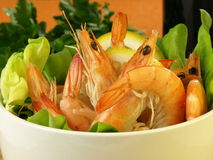 Shrimps in a healthy salad Stock Photography