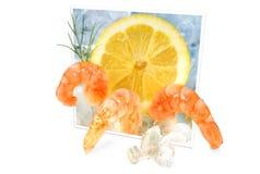 Shrimps on ice Stock Image