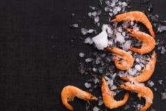 Shrimps on ice on black background. Stock Photography
