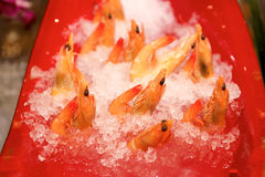 Shrimps on ice Royalty Free Stock Image
