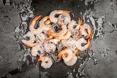 Shrimps on ice Royalty Free Stock Photos