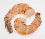 Shrimps isolated on light background Royalty Free Stock Images
