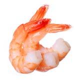 Shrimps isolated on white background stock photos