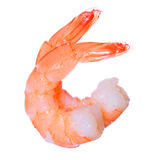 Shrimps isolated on white. Seafood Stock Photography