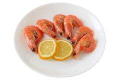 Shrimps with lemon Royalty Free Stock Photography